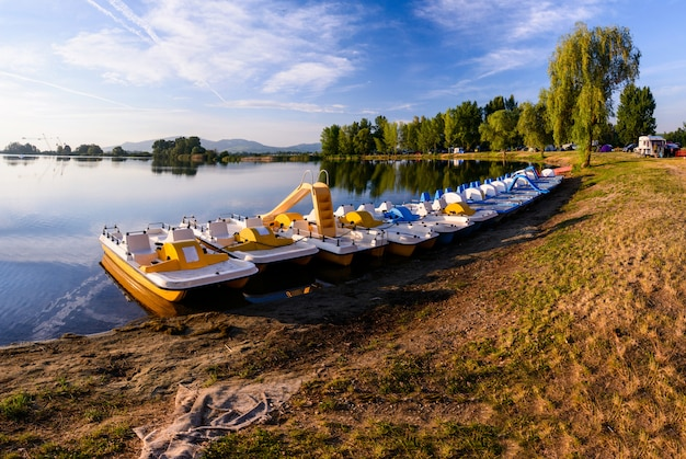 池のペダルボート