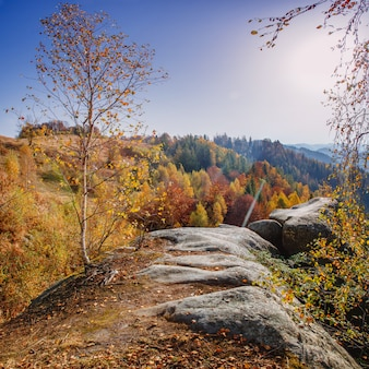 Сказочный осенний пейзаж