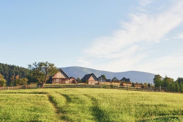 夏の日の緑の牧草地の丘の上の村の家。カルパティア山脈の山の羊飼いの家
