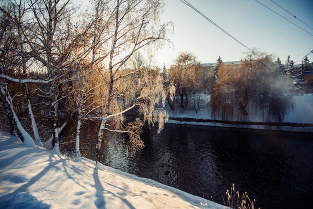 冬の公園の川