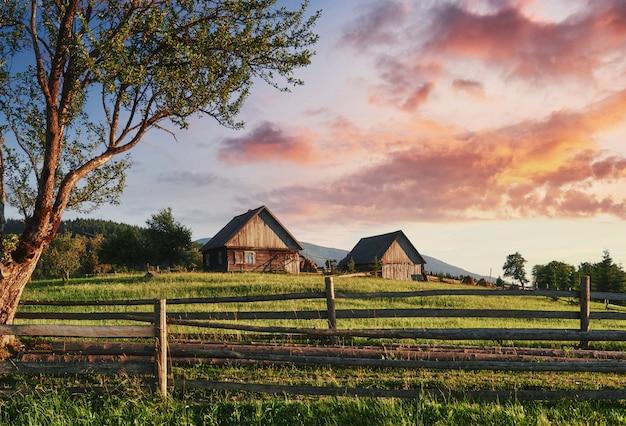 日差しの中で美しい夏の山の風景。牧草地のフェンスフェンス。田園風景