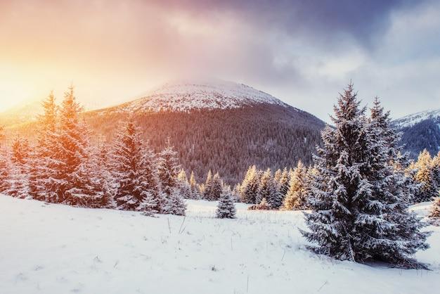 霧、雄大な山々と神秘的な冬の風景