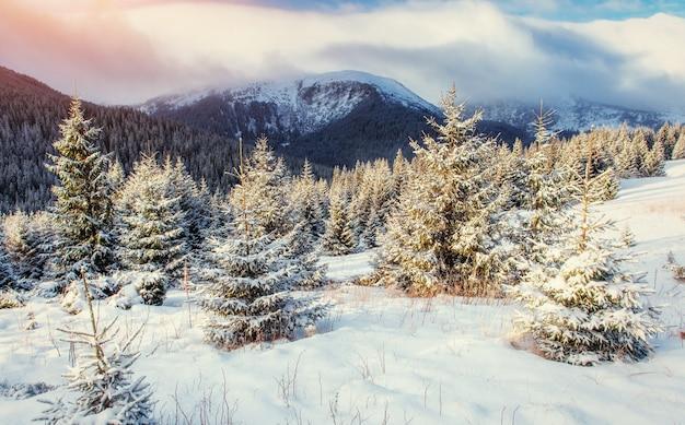 神秘的な冬の風景雄大な山々