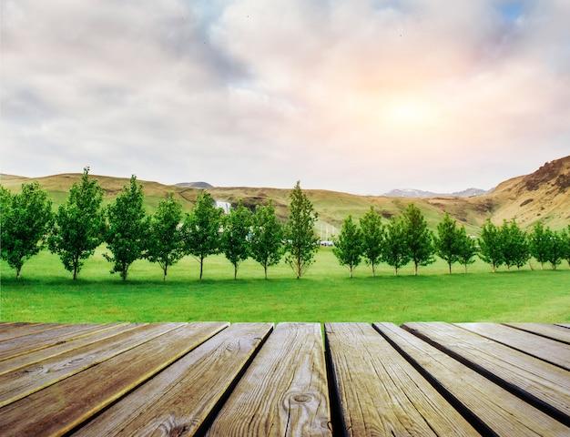 太陽の下で緑の野原。木製の板の床。美しさ、自然の背景