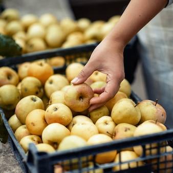 新鮮な庭の黄色いリンゴ