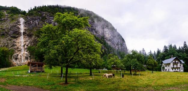 アルプスの農場