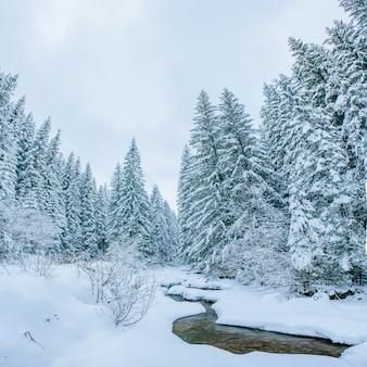 Горный ручей зимой