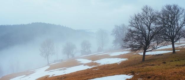 ウクライナの山の冬の最後の日、濃霧。カルパチア人。