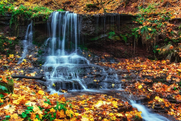 秋の日光の滝美しさの世界カルパティア山脈。ウクライナ。ヨーロッパ
