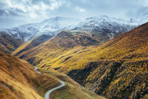 Золотой осенний пейзаж между скалистых гор в грузии. каменная дорога. европа