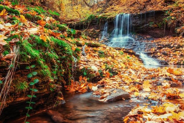秋の日光の滝。美の世界。カルパティア山脈。ウクライナ。ヨーロッパ