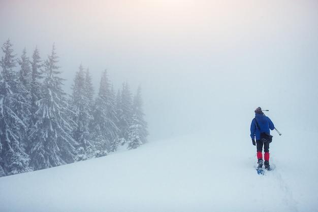 Турист в зимних горах. мир красоты. карпаты украина европа