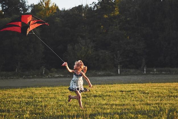 Милая маленькая девочка с длинными волосами, работает с кайтом в поле в солнечный летний день