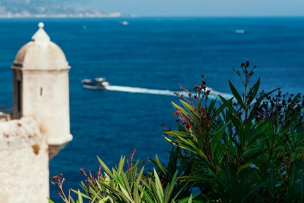 モナコのぼやけた海と王子の宮殿の花