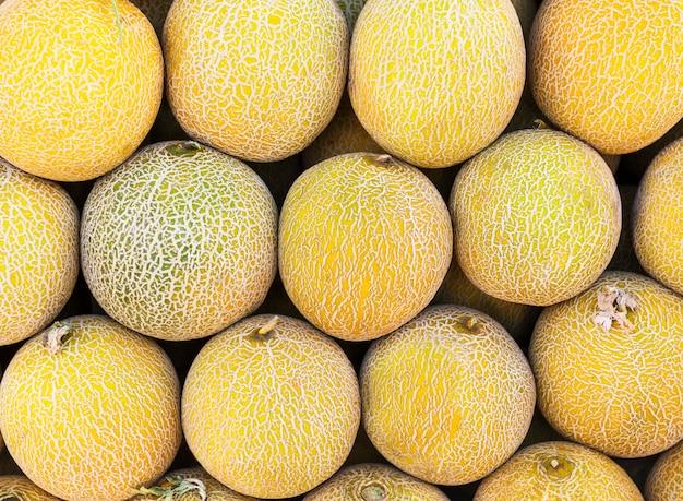 多くのメロンをクローズアップ。有機果物の完全な夏のトレイ市場農業農場。健康的な食事。