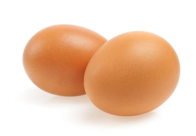 分離された白の卵