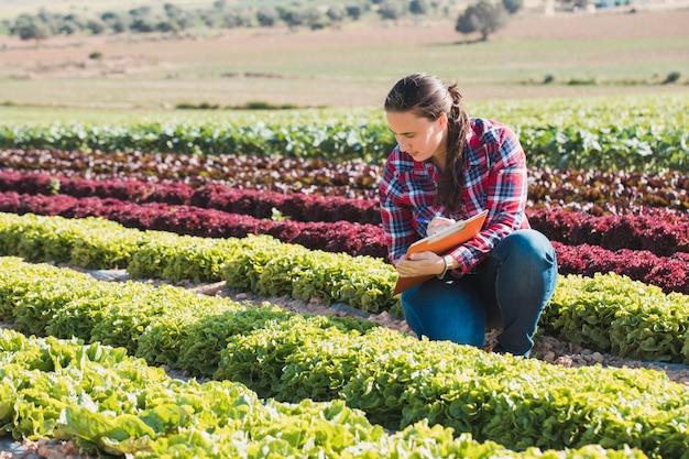 フォルダーとレタスの分野で働く若い技術的な女性