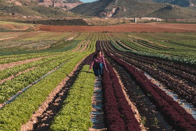 Молодая техническая женщина, работающая в области салатов