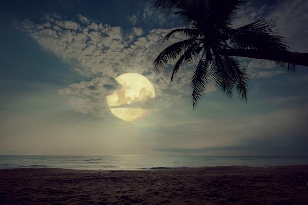 夜の空、満月、ヴィンテージの色調の星と美しいファンタジー熱帯のビーチ。