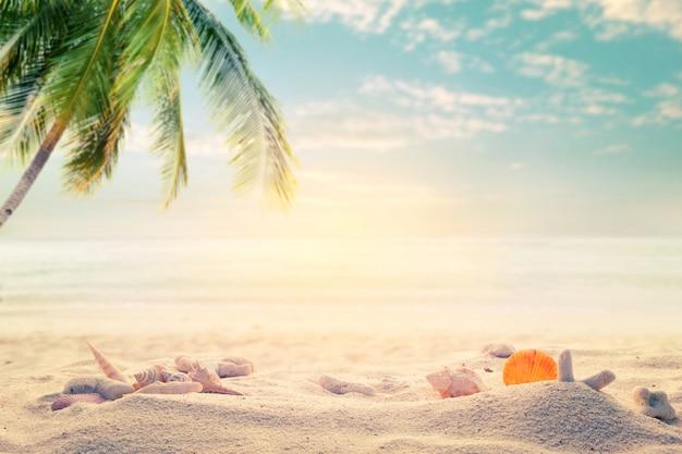 Приморский летний пляж с морскими звездами, ракушками, кораллом на песчаной отмели и размытым морским фоном. концепция летнего времени на пляже. старинный оттенок.