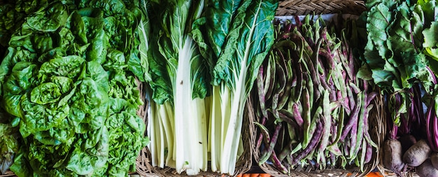 バスケット、レタス、ポッド、フダンソウ、ビートルートに置かれた新鮮な緑の野菜のコレクション