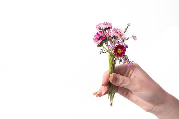 Букет полевых цветов на белом фоне. пространство для текста