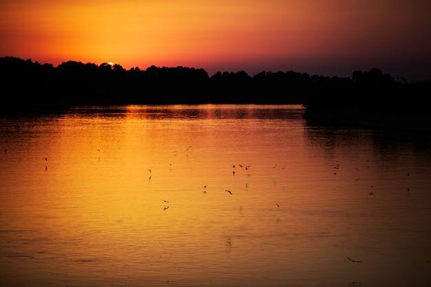 川に沈む美しいオレンジ色の夕日、夕暮れの川、水の上を飛ぶ鳥、太陽が地平線の後ろに出る