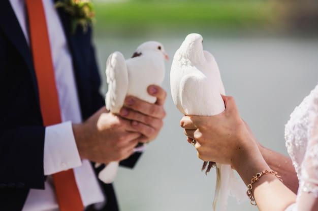Жених и невеста держат белых голубей на фоне воды. влюбленная пара
