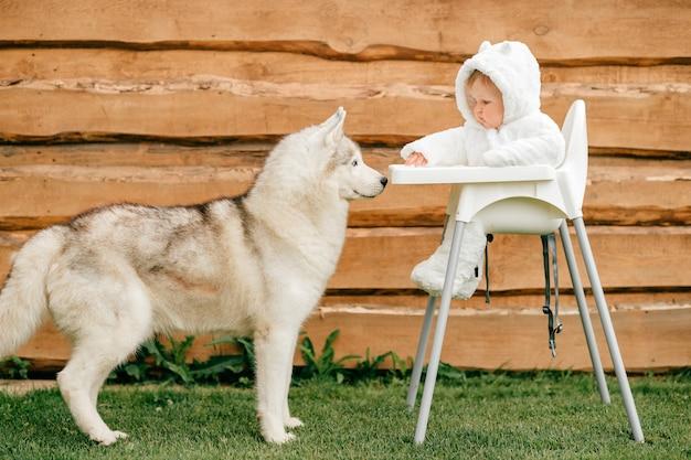 Красивая хаски стоит возле маленького ребенка, сидящего в высоком стуле в костюме белого медведя на открытом воздухе возле деревянного забора
