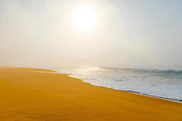 霧の霧の放棄された野生のビーチの美しい風景海景。海の波と人けのないコストの芸術の美しい風景。