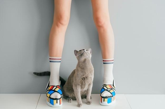 カラフルなファッショナブルなハイウェッジレザーサンダルで女性の足を見上げている猫