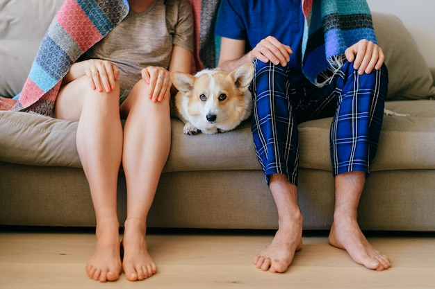 頭と犬コーギーのない男女の肖像画