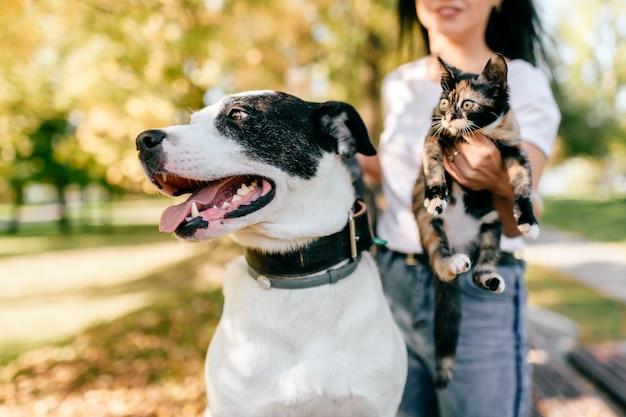 犬と子猫を持つ女性の肖像画