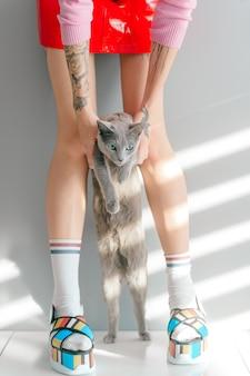 おしゃれな靴と赤いスカートのかわいい子猫を手で押しでスタイリッシュな女の子