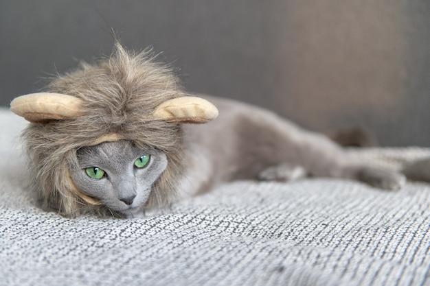 ベッドに横になっているライオンマスクで面白い遊び心のある子猫