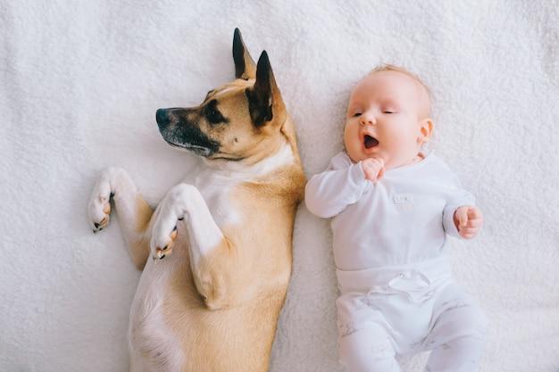 面白い子犬とベッドに横になっている素敵な赤ちゃんのトップの肖像画