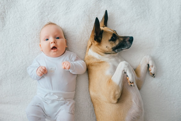 ベッドの上で面白い子犬と一緒に背中に横たわって素敵な生まれたばかりの赤ちゃんの上からの肖像画。