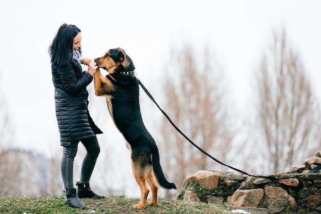 飼い主と緑の芝生で屋外の大きな純血種の国内子犬