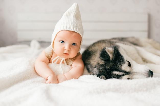 生まれたばかりの赤ちゃんのライフスタイルソフトフォーカスの肖像画は、ベッドの上のハスキーの子犬と一緒に背中に横たわっています。小さな子供と素敵なハスキー犬の友情。ペットと休んでキャップで愛らしい幼児面白い子