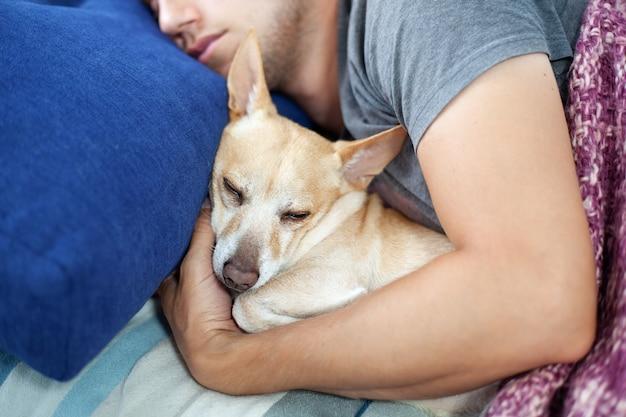 犬と寝ている若い男。男と犬はソファで一緒に寝ています。ペットアレルギーの概念。自宅で一緒にペットを持つ所有者。お互いを抱き締める家畜を持つ男。カバーの下の犬と所有者