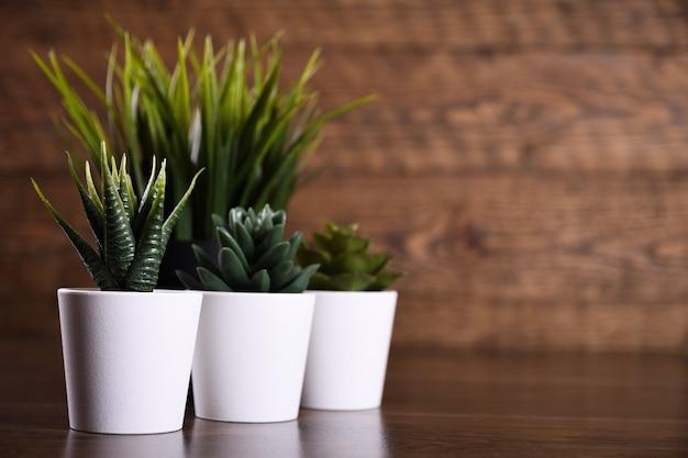 木製の背景に鍋に人工花草の異なるフォームをコピースペースとテキストでクローズアップ