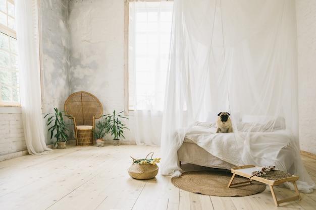 日当たりの良いスカンジナビアスタイルのインテリアベッドルーム。木製の床、天然素材、ベッドに座っている犬