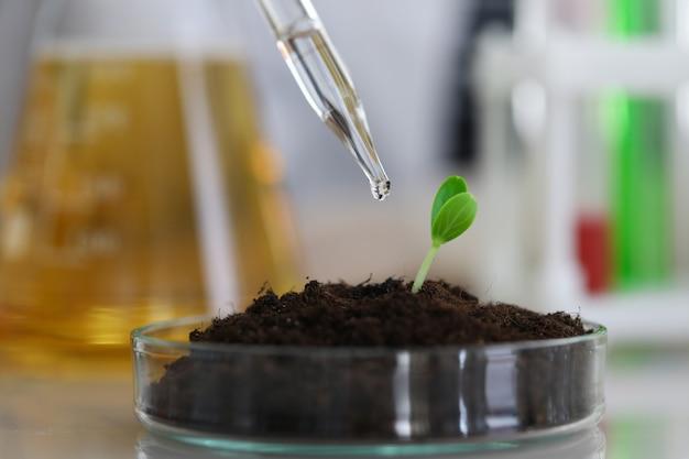 Современная лаборатория и научный тест