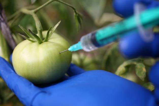 Биотехнология развития и эксперимента