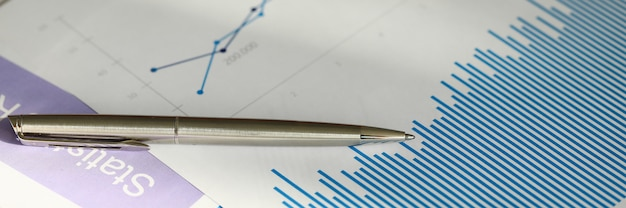財務書類と統計データ