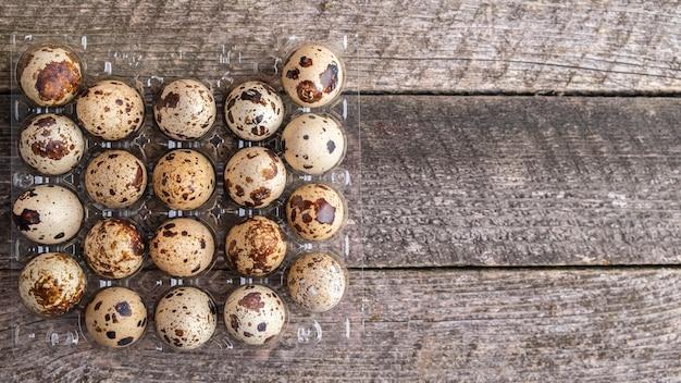 Перепелиные яйца в упаковке. вид сверху.