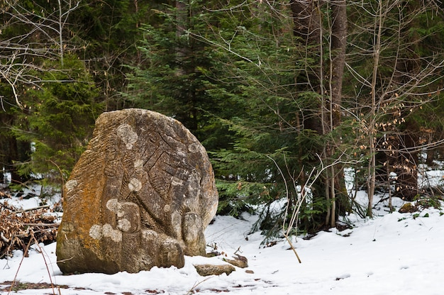 カルパティア山脈の雪に覆われた緑の森に刻まれた古代の大きな石。