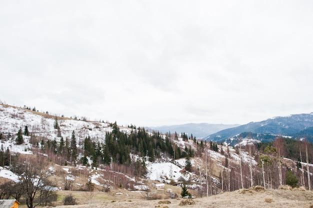 Снежные горные долины в карпатах