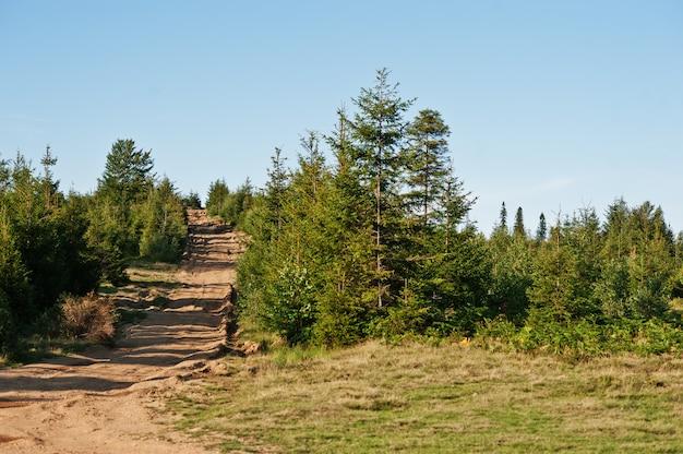 Горная дорога в карпатах на западе украины