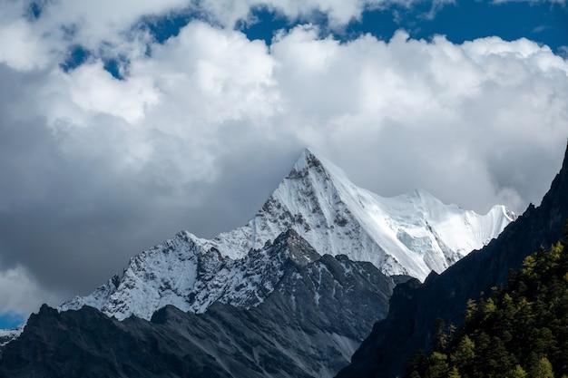 秋の森と雪の山でカラフル